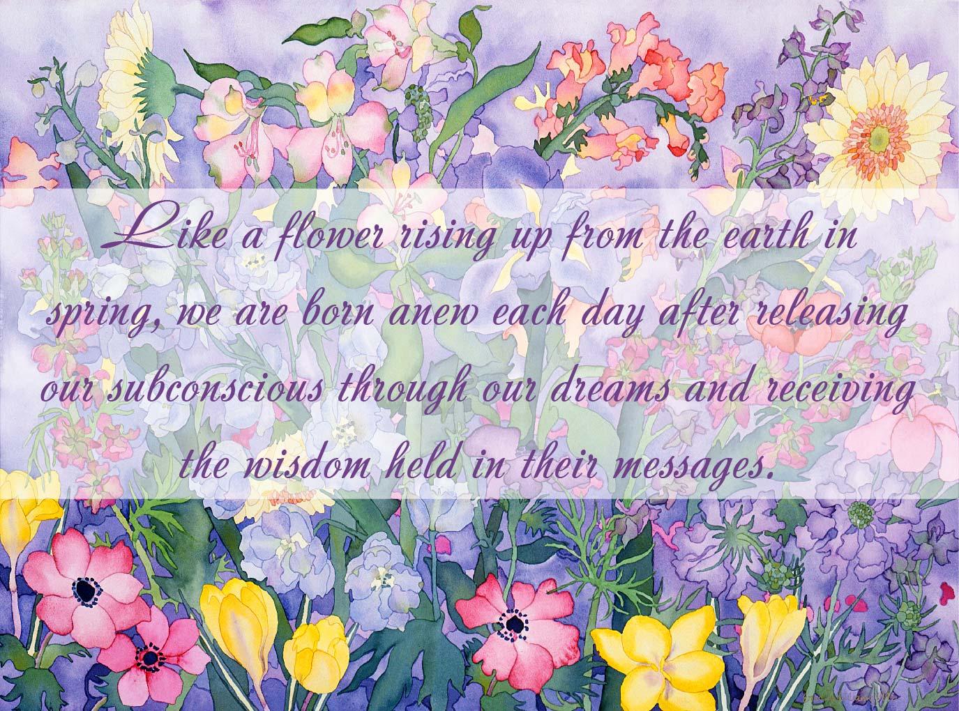 Spring Softening