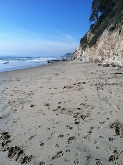 beach- blog5
