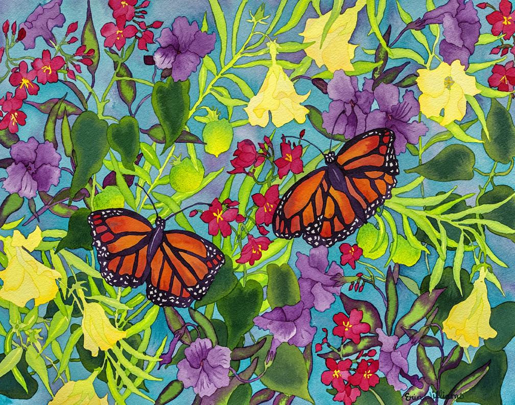 Rainbows&Butterflies – Web